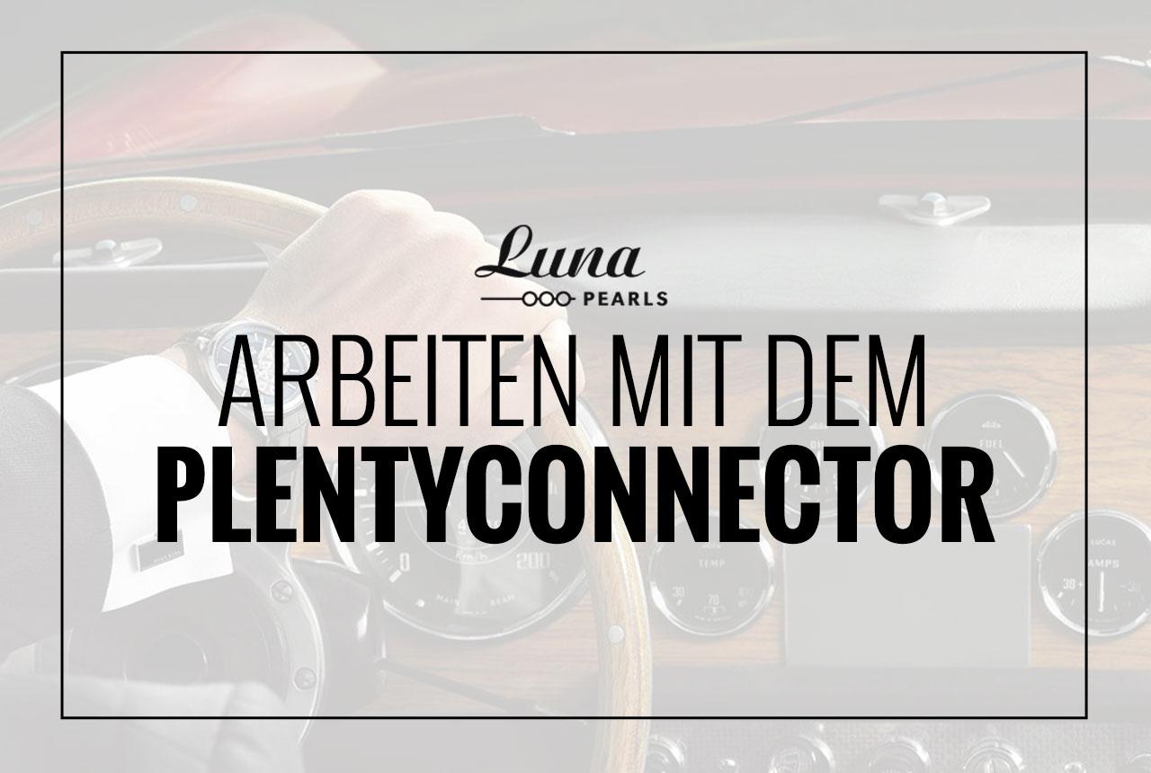 Arbeiten mit dem PlentyConnector